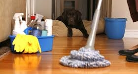 Home speed-cleaning tips to know about