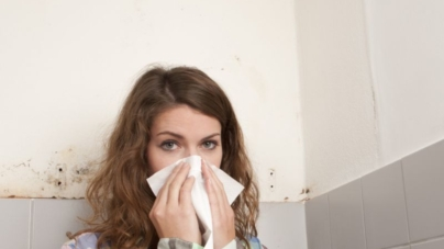 Indoor mould growth – is it really a problem?