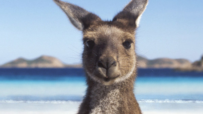 Things you should know before moving to Australia